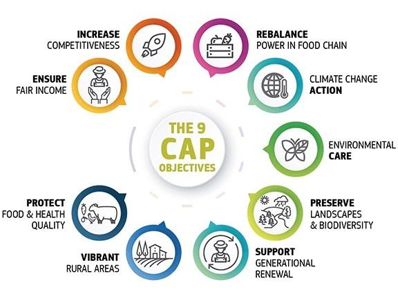 Infographic illustrating the 9 objectives of the CAP